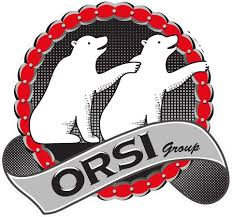 ORSI GROUP